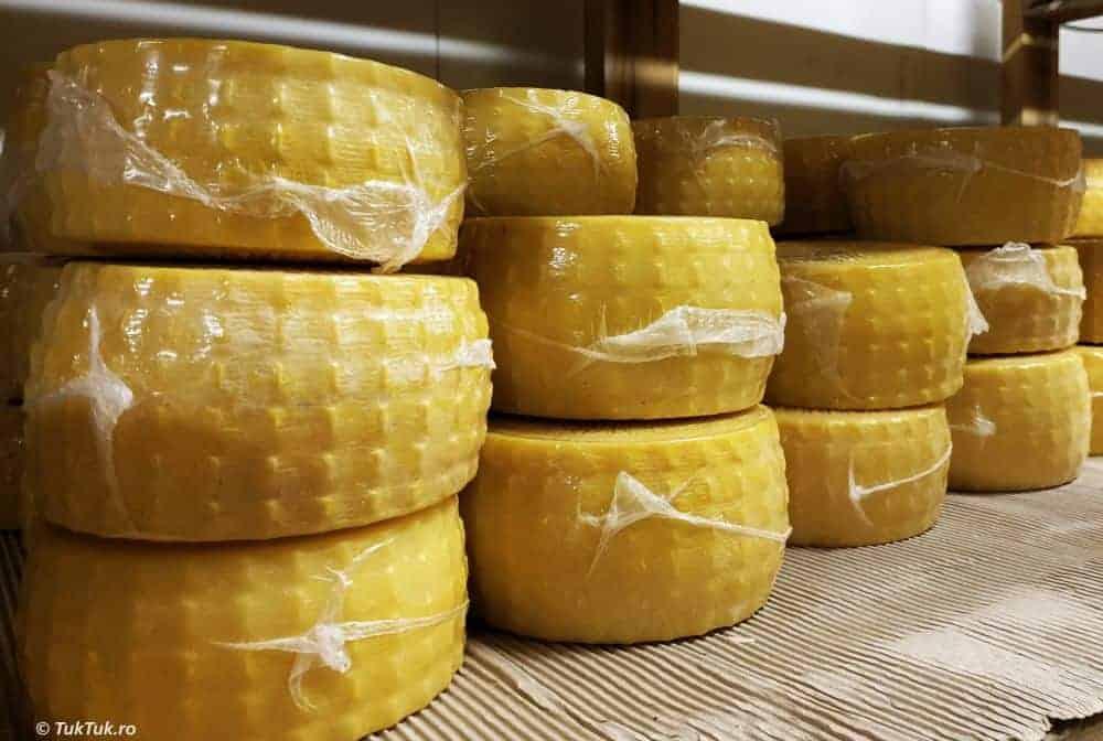 brânză creta
